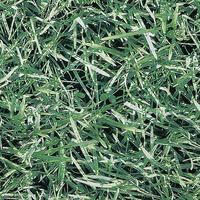 'Grass' decorative fabric
