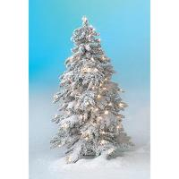 Winter fir with LED light decoration