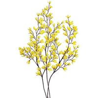 Forsythia branches set