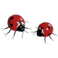 Ladybirds set