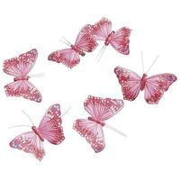 Feather Butterflies
