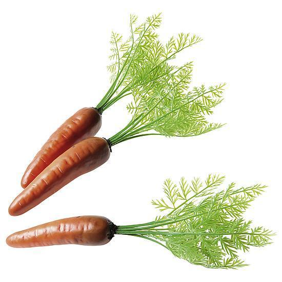 Carrot with green