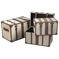 Suitcase trunk set