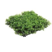 Deluxe grass moss panel