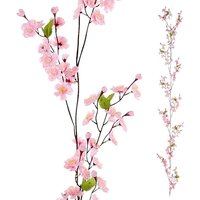 Cherry blossom tendril