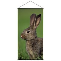 Banner Hase 100x200cm