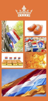 Banner Kingsday O Rood | Wit | Blauw