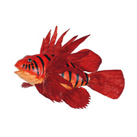 Tropical Fire fish